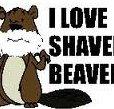 I_Love_Shaved_Beaver.jpg