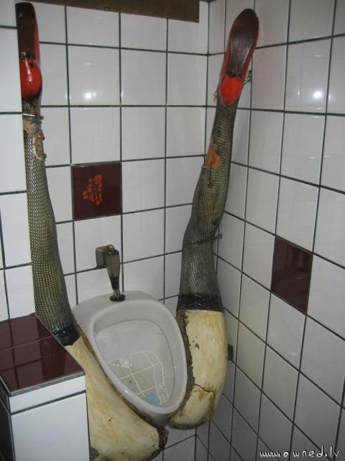 toilet_legs.jpg