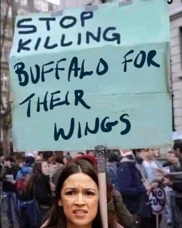 bufwings.jpg
