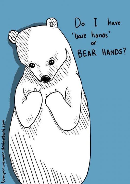 bearhand.jpg