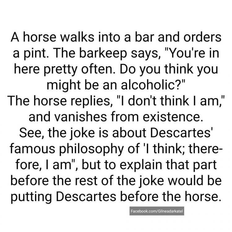 horse 22.jpg