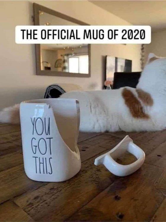 2020 Mug.jpg