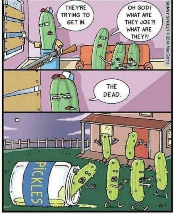 Cucumzom.jpg