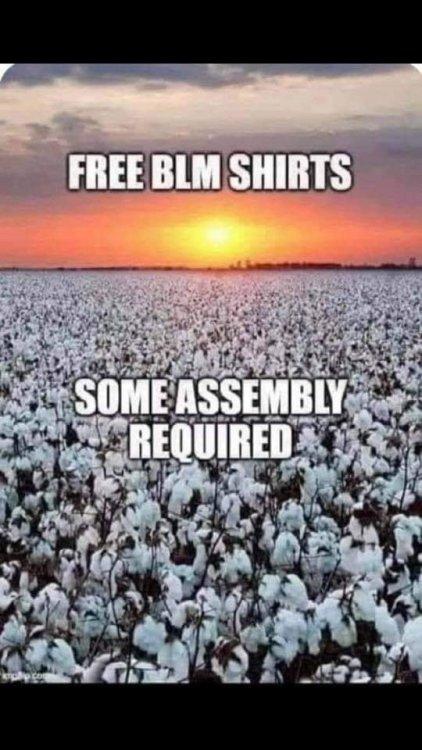 BLM Shrits.jpg