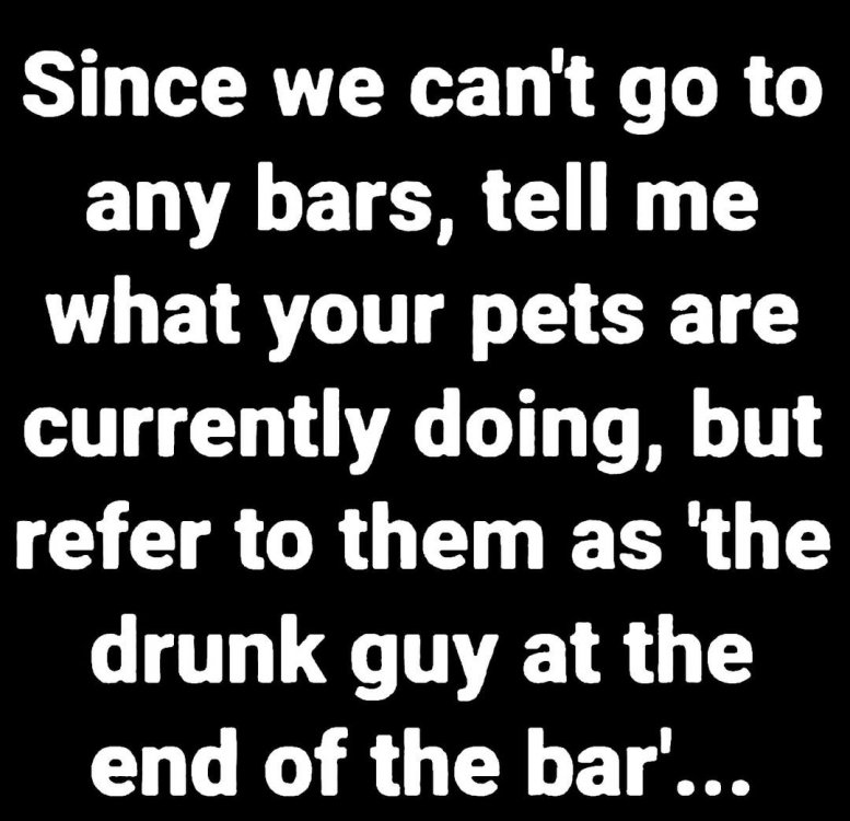 Drunk Bars.jpg