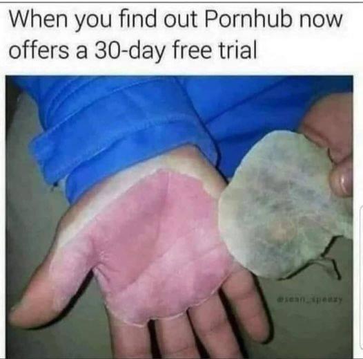 PornHub trial.jpg