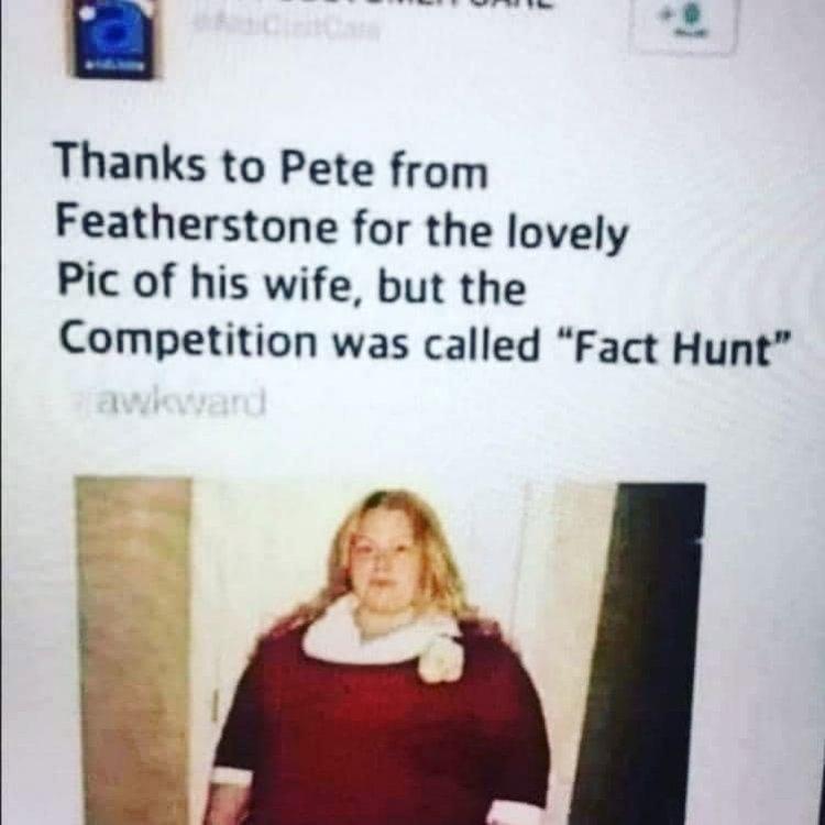 Fact Hunt.jpg