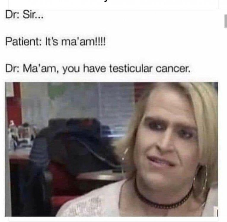 Testicular cancer.jpg