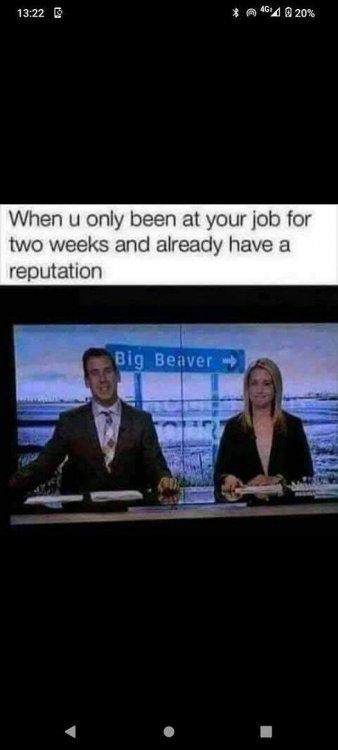 Big Beaver.jpg